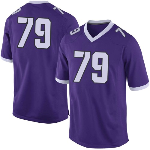 Men's Nike Esteban Avila TCU Horned Frogs Limited Purple Football College Jersey